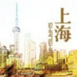 上海热门话题
