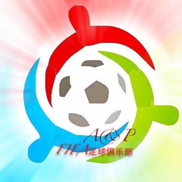 FIFA足球分析